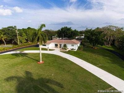 Palmetto Bay Single Family Home For Sale: 9100 SW 174th Street