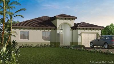 Homestead Single Family Home For Sale: 17360 SW 299th St