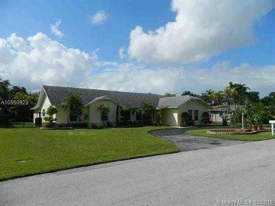 Palmetto Bay Single Family Home For Sale: 7560 SW 174 Street