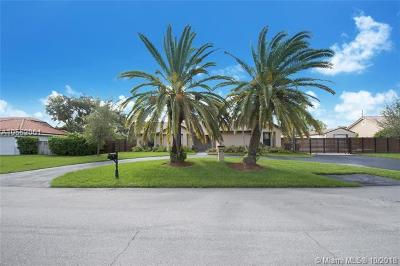 Cutler Bay Single Family Home For Sale: 8150 SW 187 Terrace