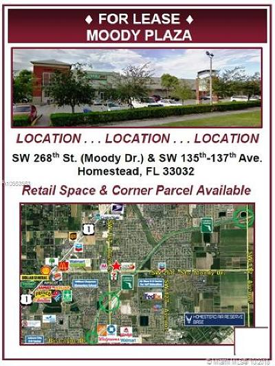 Homestead Commercial For Sale: 13501 SW 268th St