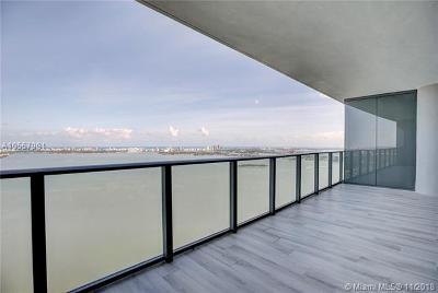 One Paraiso, One Paraiso Condo, One Paraiso Condominium Rental For Rent: 3131 NE 7th Avenue #4304