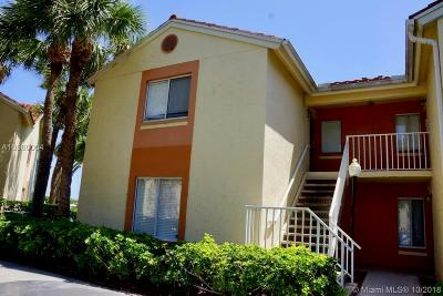 West Palm Beach Condo Active With Contract: 1442 The Pointe Dr #1442