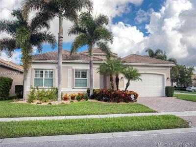 Boynton Beach Single Family Home For Sale: 9121 Clayton Mnr