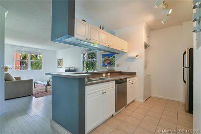 Sunny Isles Beach Condo For Sale: 17125 N Bay Rd #3313