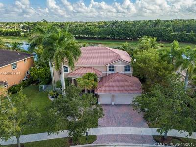 Weston Single Family Home For Sale: 1017 Waterside Cir
