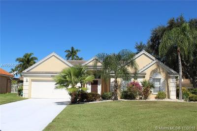 Lake Worth Single Family Home For Sale: 6417 Old Medinah Cir