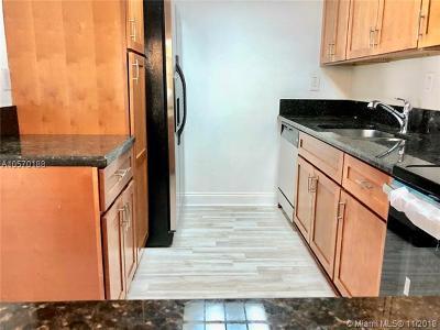 Miami Condo For Sale: 20680 NE 4 Ct #105