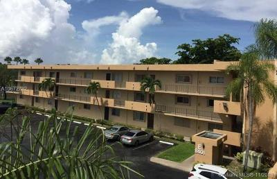 Miami FL Condo For Sale: $220,000