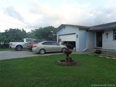 Homestead Single Family Home For Sale: 21160 SW 328th St