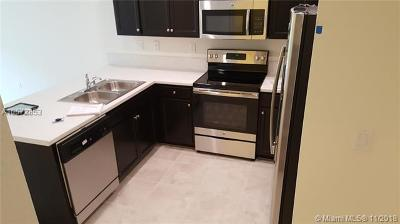 Homestead Condo For Sale: 11417 SW 252nd Ter #11417