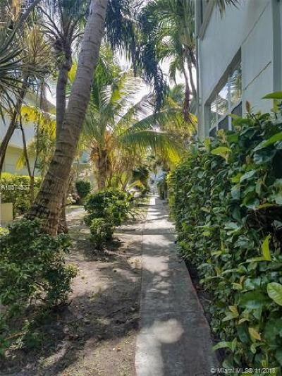 Miami Beach Condo For Sale: 1289 Marseille Dr #49