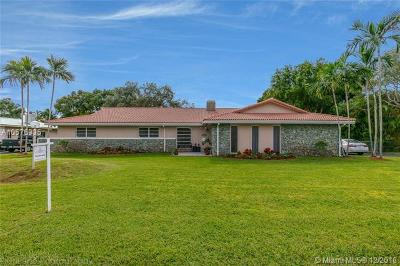 Palmetto Bay Single Family Home For Sale: 7834 SW 165th St