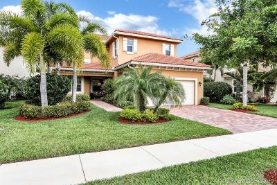 Palm Beach Gardens Single Family Home For Sale: 12196 N Aviles Cir