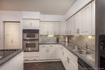 North Miami Beach Condo For Sale: 3701 NE 170th St #1