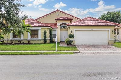 Pembroke Pines Single Family Home For Sale: 19150 SW 16th St