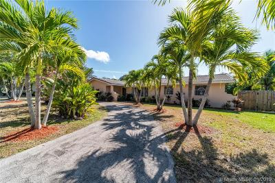 Palmetto Bay Single Family Home For Sale: 7600 SW 168th St
