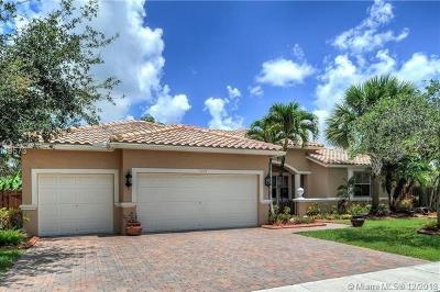 Pembroke Pines Single Family Home For Sale: 1171 SW 189th Ter