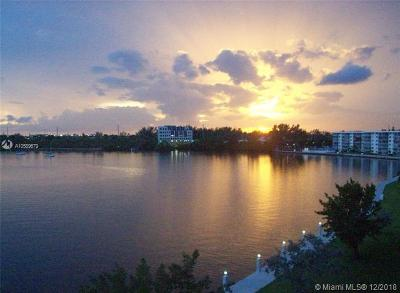 Aventura Condo For Sale: 2920 Point East Dr #N307