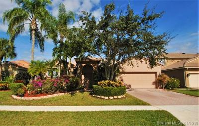 Boca Raton Single Family Home For Sale: 8647 Via Ancho Rd