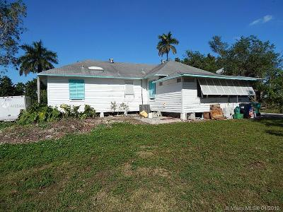 Homestead Single Family Home For Sale: 19930 SW 256th St