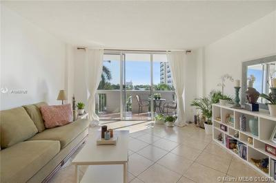 Miami Beach Condo For Sale: 800 West Ave #526