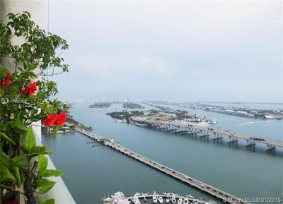 The Grand, The Grand At Venetian, The Grand Condo, The Grand Bay, The Grand Condominium, The Grand Doubletree, The Grand Fka, The Grand Fka Venetia, The Grand Venetian, The Grand Venetian Condo, The Grande Condo Rental For Rent: 1717 N Bayshore Dr #A-4246