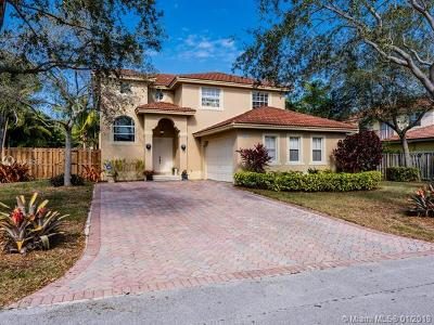 Palmetto Bay Single Family Home For Sale: 9063 SW 163rd Ter