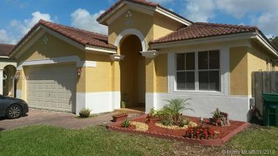 Homestead Single Family Home For Sale: 11045 SW 243rd St