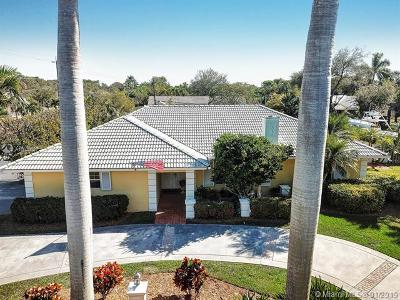 Palmetto Bay Single Family Home For Sale: 16803 SW 89th Ave