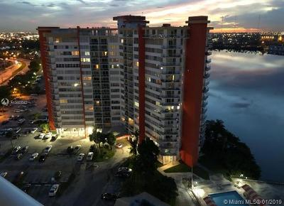 Miami FL Condo For Sale: $250,000