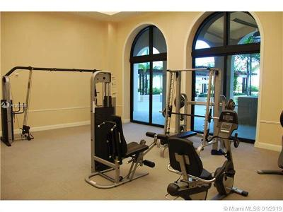 Coral Gables Rental For Rent: 1300 Ponce De Leon Blvd #506