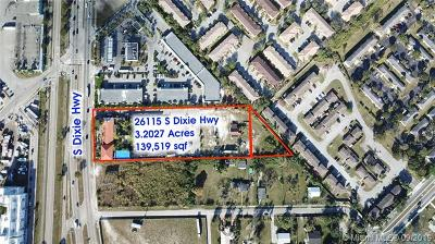 Homestead Commercial For Sale: 26115 S Dixie Hwy