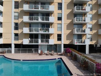 Miami-Dade County Condo For Sale: 2020 NE 135th St #207