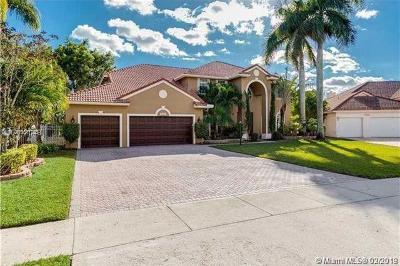 Pembroke Pines Single Family Home For Sale: 16574 S Segovia Cir S