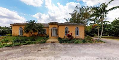 Homestead Single Family Home For Sale: 22300 SW 250th St