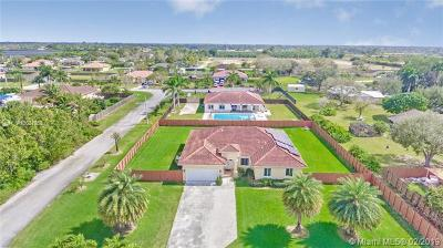 Homestead Single Family Home For Sale: 30603 SW 195th Ave