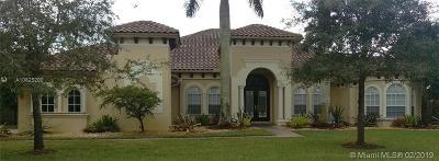 Davie Single Family Home For Sale: 12714 S Winners Cir