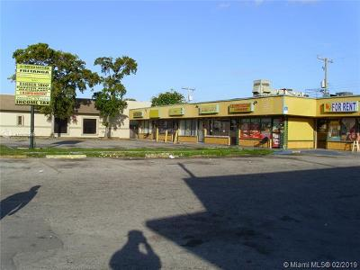 North Miami Commercial For Sale: 1237 NW 119th St #1227