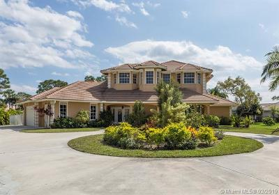 Palm Beach Gardens Single Family Home For Sale: 11790 Stonehaven