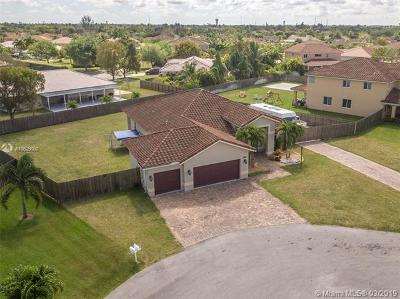 Homestead Single Family Home For Sale: 2207 NW 15th Pl