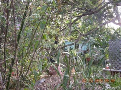 Dania Beach Multi Family Home For Sale: 4880 SW 28th Ave
