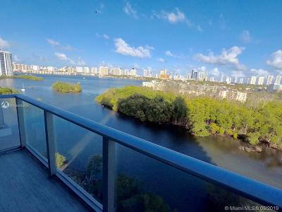 Condo For Sale: 16385 Biscayne Blvd #1117