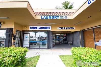 Miami Business Opportunity For Sale: 4577 NW 7 St