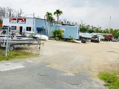Monroe County Single Family Home For Sale: 30641 Overseas Hwy