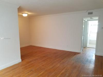 North Miami Beach Condo For Sale: 981 NE 169th St #206
