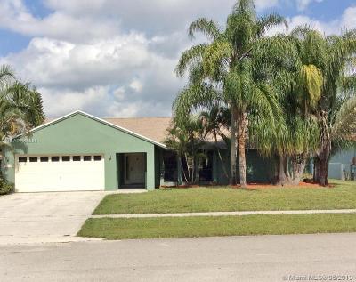 Royal Palm Beach Single Family Home For Sale: 138 Bilbao St