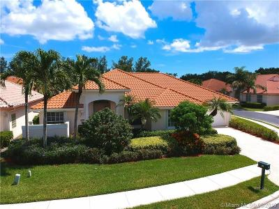 Palm Beach County Single Family Home For Sale: 209 Eagleton Estate Blvd