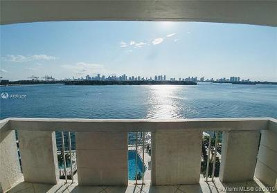 Miami Beach Rental For Rent: 800 West Ave #825