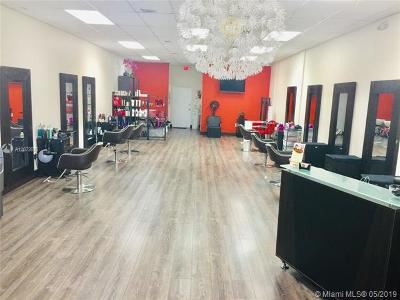 Hallandale Business Opportunity For Sale